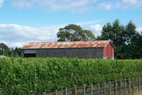 Stirling Vineyard